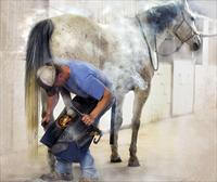 1stphotography-thefarrier-patriciajarvis-boulderco